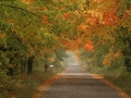 Scenic Backroads - Alger County, Michigan
