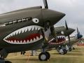 EAA Airventure - P-40 Kittyhawks and P-51 Mustangs