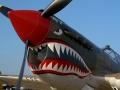 EAA Airventure - Curtiss P-40 Kittyhawk