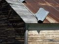 Old Shed Roof - Watson, Michigan