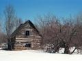 Abandoned Log Cabin - Ontonagon County