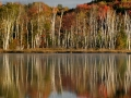 Council Lake - Alger County, Michigan