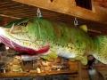 Carl T. Johnson Hunting and Fishing Center - Cadillac, Michigan