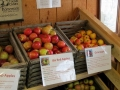 The Fruitful Orchard & Cider Mill