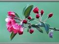 Cherry Blossums