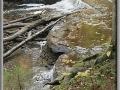 Haymeadow Falls, Michigan