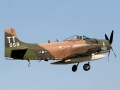 EAA Air Show