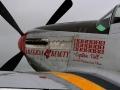 "P-51 Mustang ""American Beauty"""
