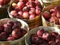 Fresh apples by the bushel
