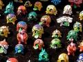 Lotsa Toy Turtles