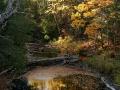 Cliff Drive Overlook