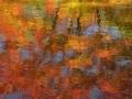 Autumn's Spectrum