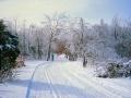 86-01_XC_Skiing_10