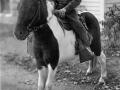 1950s+Phil+on+Pony+Berkley-3163798357-O