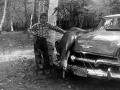 1958+Phil+by+Deer+on+Car-3163798977-O_adj